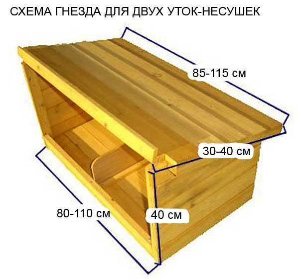 Схема сборки гнезда для двух уток-наседок
