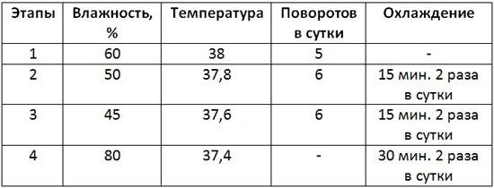 Таблица режима инкубации яиц мускусных уток