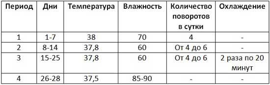 Температура параметров инкубации утиных яиц