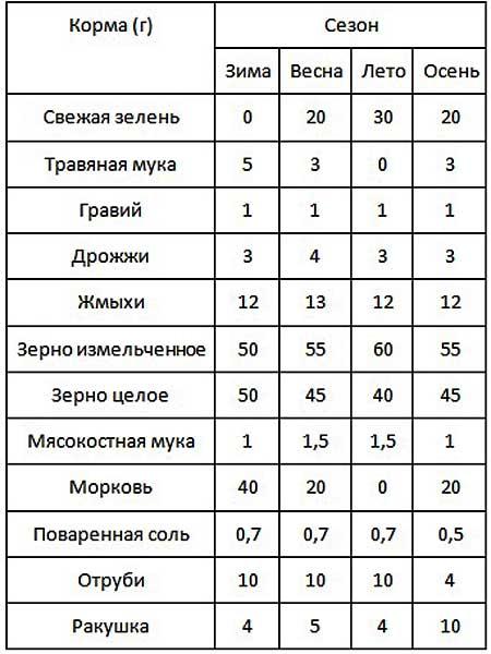 Таблица суточных норм кормления кур по сезонам