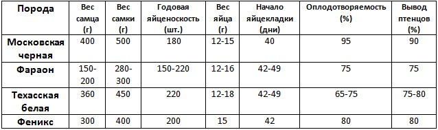 Сравнение мясных пород
