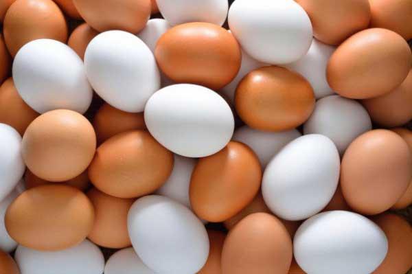 Яйца в инкубатор лучше закладывать вечером