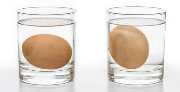 Плавают в стаканах с водой
