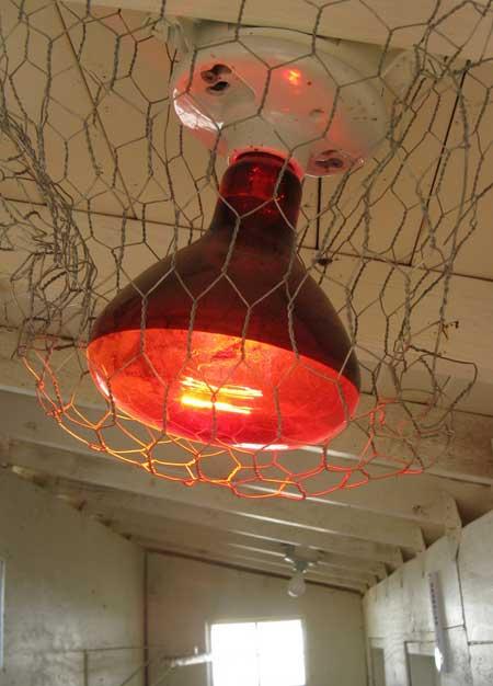 Инфракрасная лампочка