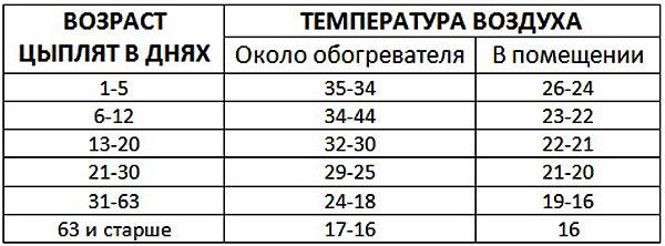 Температурные показатели для цыплят бройлеров